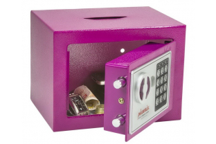 Phoenix Princess Pink money Deposit safe